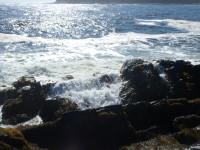 Port Bickerton Lighthouse: The Rocks