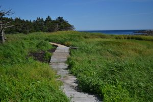 Port Bickerton Lighthouse - Lovitt's Nature Walk