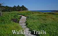 Port Bickerton - Walking Trails